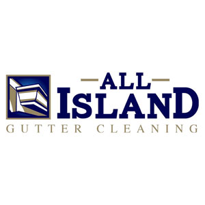 Gutter Cleaning Logo
